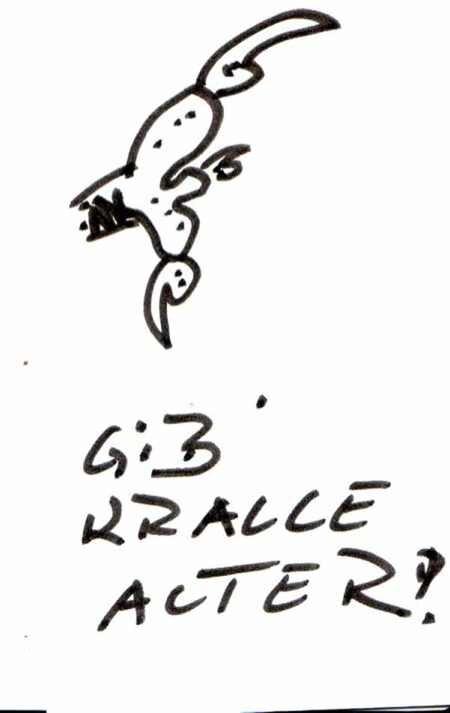 Gibkralle