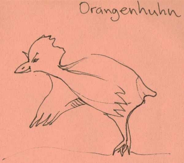 Orangenhuhn