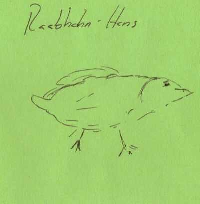 Raabhahn