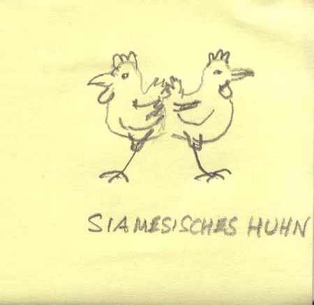 Siamesischeshuhn