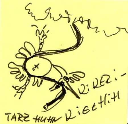 Tarzhuhn 1