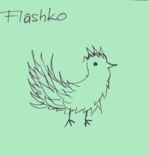 Flashko