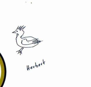 Herberthuhn