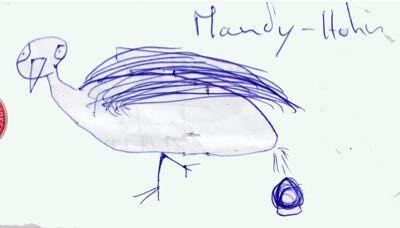 Mandyhuhn