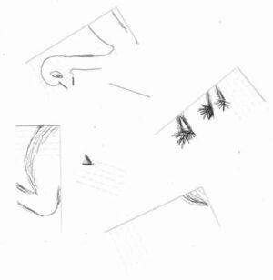 Passtnichhuhnschnitt