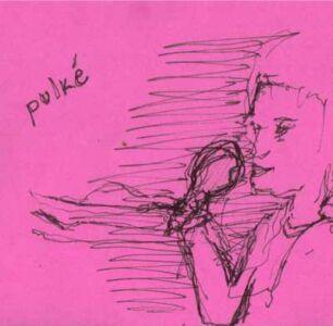 Pulke