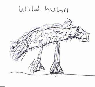 Wildhuhn